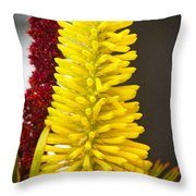 A Pair Of Yellow And Red Throw Pillow