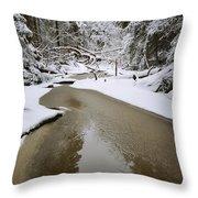 A Partially Frozen Stream Runs Throw Pillow