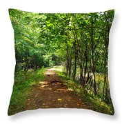 A Path Around The Pond Throw Pillow
