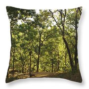 A Path Through A Sparse Forest And Trees Throw Pillow