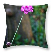 A Peaceful Moment Throw Pillow