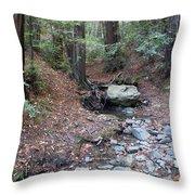 A Peaceful Redwood Creek On Mt Tamalpais Throw Pillow