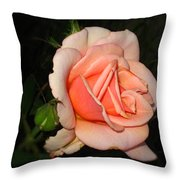 A Peach Of A Rose Throw Pillow