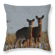 A Perfect Pair Throw Pillow