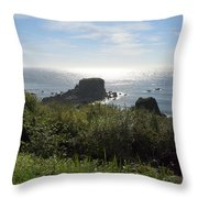 A Perfect View Throw Pillow
