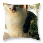 A Pet And Christmas Throw Pillow