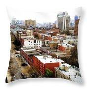 A Philadelphian View Throw Pillow
