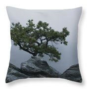 A Pine Tree Clings To A Rocky Ridge Throw Pillow