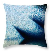 A Place To Ponder Macro3 Throw Pillow