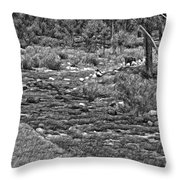 A Place Without Time Sketch 2 Throw Pillow