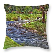 A Place Without Time Sketch Throw Pillow