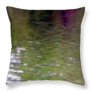A Pond Reflection - Water Throw Pillow