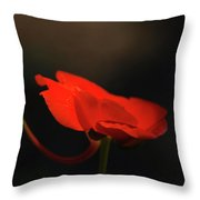 A Pop Of Orange Throw Pillow
