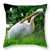 A Preening Stork Throw Pillow