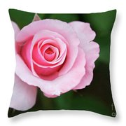 A Pretty Pink Rose Throw Pillow