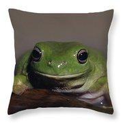 A Queensland Subspecies Of Green Tree Throw Pillow