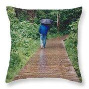 A Rainey Day In Alaska Throw Pillow