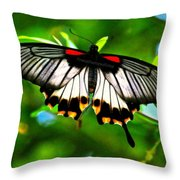 A Real Beauty Butterfly Throw Pillow
