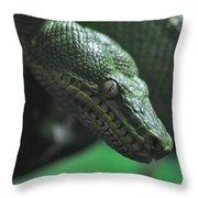 A Real Reptile Throw Pillow