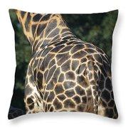 A Rear View Of A Rothschild Giraffe Throw Pillow