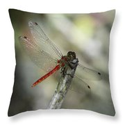 A Red Dragonfly Throw Pillow