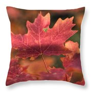 A Red Fall  Throw Pillow
