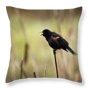 A Red-winged Blackbird Agelaius Throw Pillow