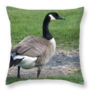 A Regal Goose Throw Pillow