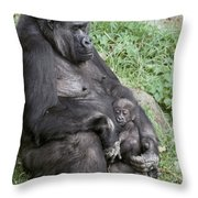 A Relaxed Western Lowland Gorilla Throw Pillow