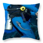 A Remora Attached To A Diver, Kimbe Throw Pillow
