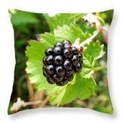 A Ripe Blackberry Throw Pillow