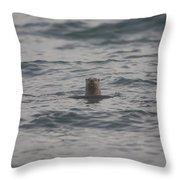 A River Otter Sticks His Head Throw Pillow
