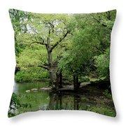 A River Runs Through Central Park  Throw Pillow