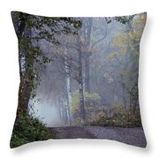 A Road Through A Misty Wood Throw Pillow
