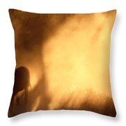 A Roaming Horse In Montana Throw Pillow