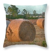 A Roll In The Hay Throw Pillow
