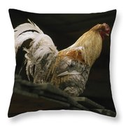 A Rooster Struts On A Wood Roof Throw Pillow