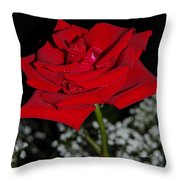 A Rose For Suzanne Throw Pillow