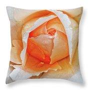 A Roses Tear Throw Pillow