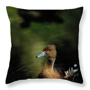 A Ruddy Duck Swims Through The Marsh Throw Pillow