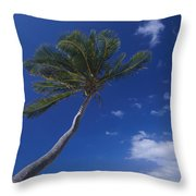 A Scenic View Of A Palm Tree Throw Pillow