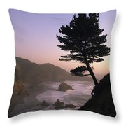 A Scenic View Of The Oregon Coast Throw Pillow