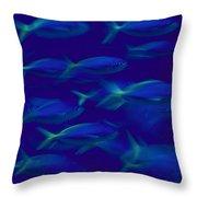 A School Of Fusilier Fish, Caesio Teres Throw Pillow