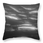 A School Of Silvery Salmon Throw Pillow