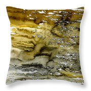 A Sea Of Raw Sienna Throw Pillow