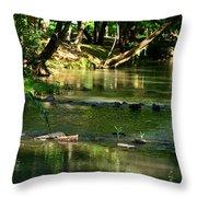 A Secret Place To Meditate Throw Pillow