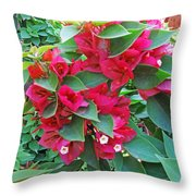 A Section Of Pink Bougainvillea Flowers Throw Pillow