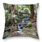 A Sense Of Calm V2 Throw Pillow
