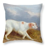 A Setter On The Moor Throw Pillow by Philip Reinagle