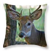 A Seven Point Profile 9752 Throw Pillow